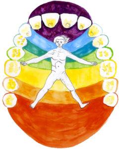 L'univers dentaire énergétique, psychomorphologique et spirituel - Michèle Caffin