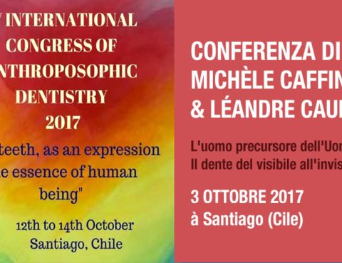 Conférence Michèle Caffin - chili