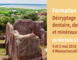 """Formation """"Décryptage dentaire, dents et minéraux"""" - 4 / 5 mai 2018 à Massaciuccoli (Italie)"""